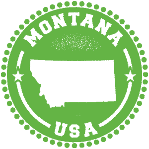 Colorado Business Registration | Starting a Business in Montana | MemDog Domains | Team Hiploch